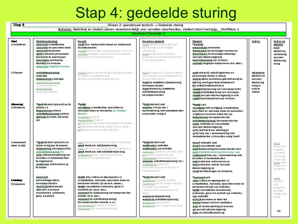 Stap 4: gedeelde sturing