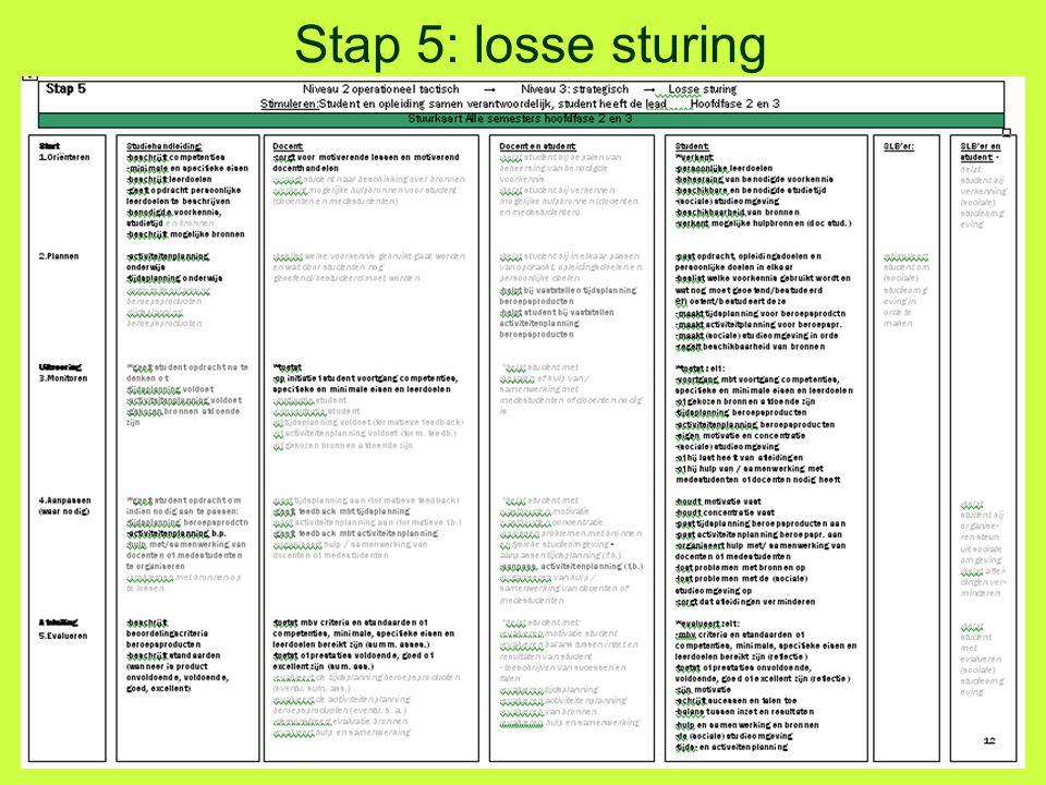 Stap 5: losse sturing