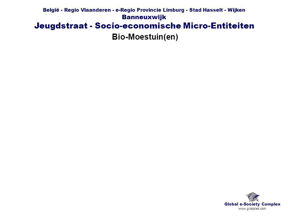 België - Regio Vlaanderen - e-Regio Provincie Limburg - Stad Hasselt - Wijken Banneuxwijk Jeugdstraat - Socio-economische Micro-Entiteiten Bio-Moestuin(en) Global e-Society Complex www.globplex.com
