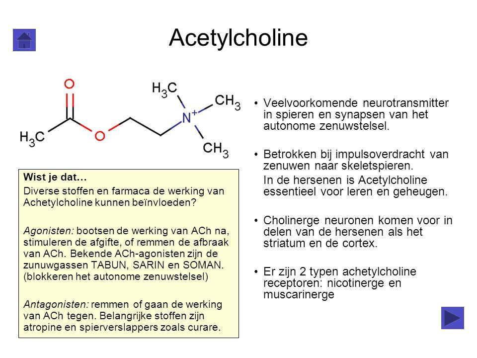 Acetylcholine Veelvoorkomende neurotransmitter in spieren en synapsen van het autonome zenuwstelsel. Betrokken bij impulsoverdracht van zenuwen naar s