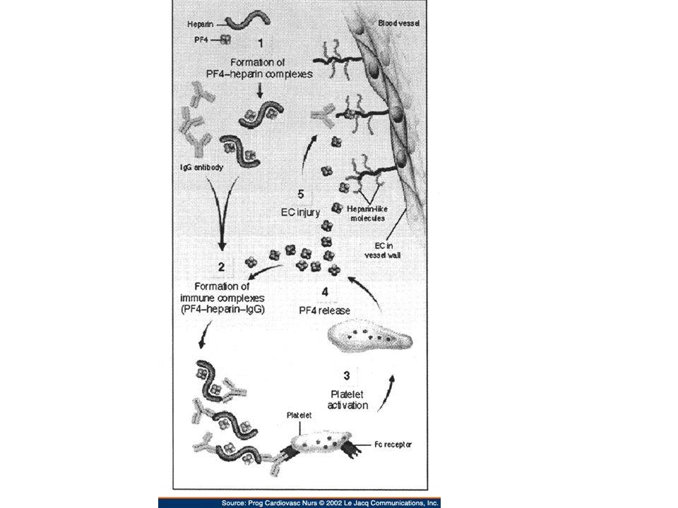 HIT Type 2 Thrombotic Sequelae of HIT: –Venous: arterial thrombosis = 4:1 –DVT (50%) –PE (25%) –Acute limb ischemia (10-20%) –Warfarin-associated venous limb gangrene (5-10%) –Acute thrombotic stroke or MI (3-5%)
