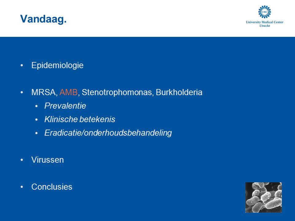 Vandaag. Epidemiologie MRSA, AMB, Stenotrophomonas, Burkholderia Prevalentie Klinische betekenis Eradicatie/onderhoudsbehandeling Virussen Conclusies