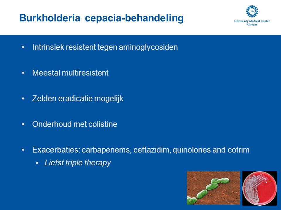 Burkholderia cepacia-behandeling Intrinsiek resistent tegen aminoglycosiden Meestal multiresistent Zelden eradicatie mogelijk Onderhoud met colistine