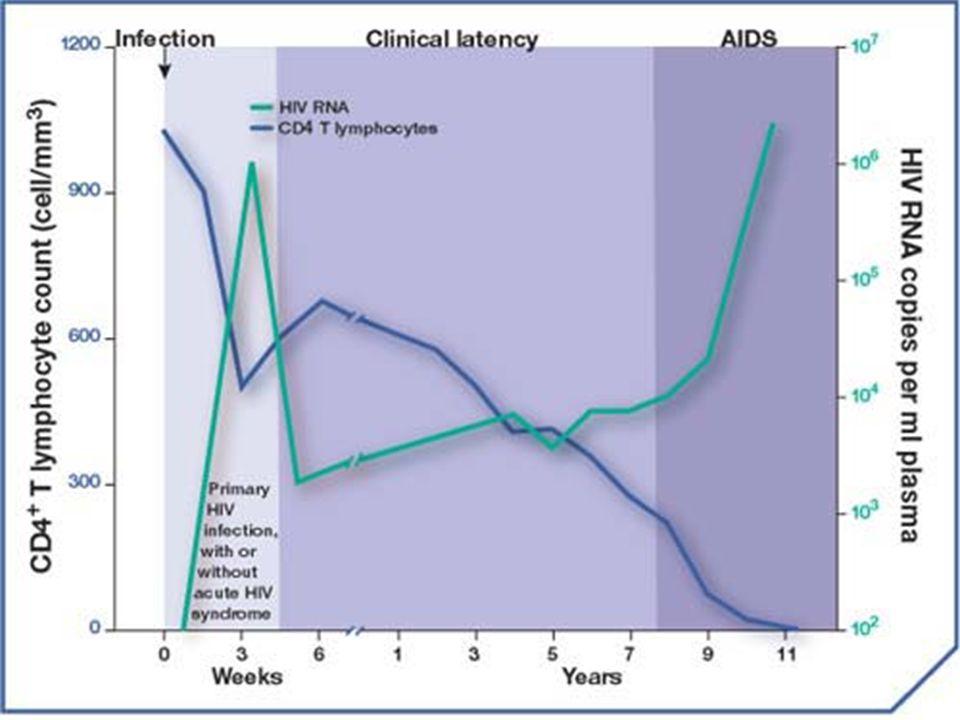 Opportunistische infecties Sommige veel frequenter zo immuundef.: zona, orale Candida, bact.