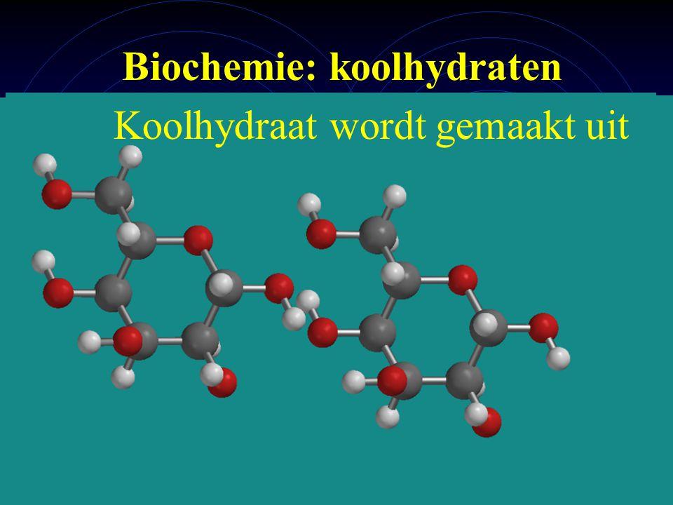 mlavd@BCEC3 Biochemie: koolhydraten - koolhydraten ingezoomd Koolhydraat wordt gemaakt uit