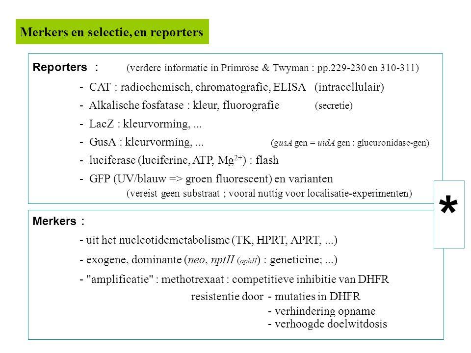 Reporters : (verdere informatie in Primrose & Twyman : pp.229-230 en 310-311) - CAT : radiochemisch, chromatografie, ELISA (intracellulair) - Alkalische fosfatase : kleur, fluorografie (secretie) - LacZ : kleurvorming,...