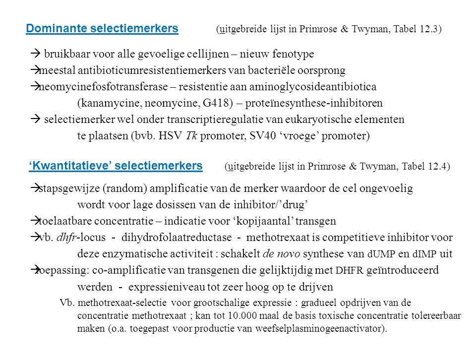 Dominante selectiemerkers (uitgebreide lijst in Primrose & Twyman, Tabel 12.3)  bruikbaar voor alle gevoelige cellijnen – nieuw fenotype  meestal antibioticumresistentiemerkers van bacteriële oorsprong  neomycinefosfotransferase – resistentie aan aminoglycosideantibiotica (kanamycine, neomycine, G418) – proteïnesynthese-inhibitoren  selectiemerker wel onder transcriptieregulatie van eukaryotische elementen te plaatsen (bvb.