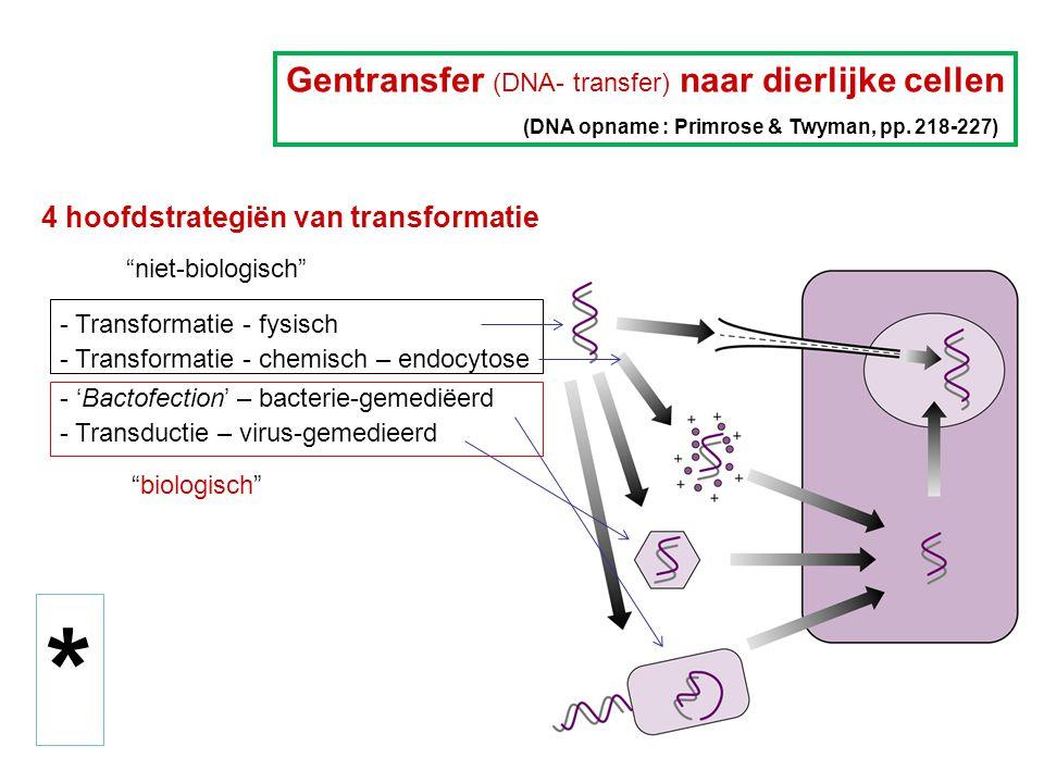 Endogene selectiemerkers (Primrose & Twyman, voor een korte lijst in Tabel 12.2 en beschrijving in Fig 12.3) Voorbeeld: Tk = thymidinekinasegen  historisch : experiment met muiscellen deficiënt in TK - te transformeren met Herpes Simplex Virus (HSV) Tk gen => resultaat : activiteit herwonnen  transformanten te selecteren op HAT-medium (hypoxanthine - aminopterine - thymidine) : aminopterine blokkeert de de novo synthese van dTMP (en dus van dTTP)  voor achtergrond : zie figuur op volgende slide - 'de novo' en 'salvage pathway'  toepassing : bij co-transformatie met andere transgenen die men wou overbrengen : transfectie met 2 ongekoppelde DNA's resulteerde in 90% co-transformanten ; m.a.w.