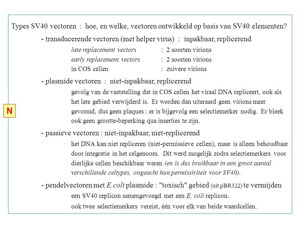 Types SV40 vectoren : hoe, en welke, vectoren ontwikkeld op basis van SV40 elementen.