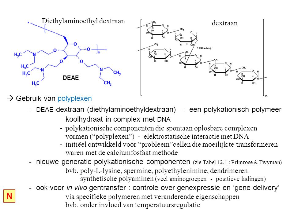 Diethylaminoethyl dextraan dextraan DEAE  Gebruik van polyplexen - DEAE -dextraan (diethylaminoethyldextraan) – een polykationisch polymeer koolhydraat in complex met DNA -polykationische componenten die spontaan oplosbare complexen vormen ( polyplexen ) - elektrostatische interactie met DNA -initiëel ontwikkeld voor probleem cellen die moeilijk te transformeren waren met de calciumfosfaat methode -nieuwe generatie polykationische componenten (zie Tabel 12.1 : Primrose & Twyman) bvb.