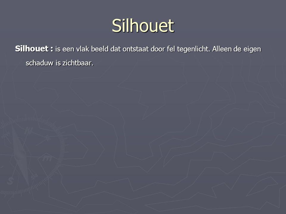 Silhouet Silhouet : is een vlak beeld dat ontstaat door fel tegenlicht. Alleen de eigen schaduw is zichtbaar.