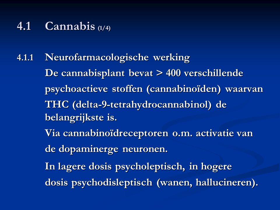 4.1 Cannabis (1/4) 4.1.1 Neurofarmacologische werking De cannabisplant bevat > 400 verschillende psychoactieve stoffen (cannabinoïden) waarvan THC (de