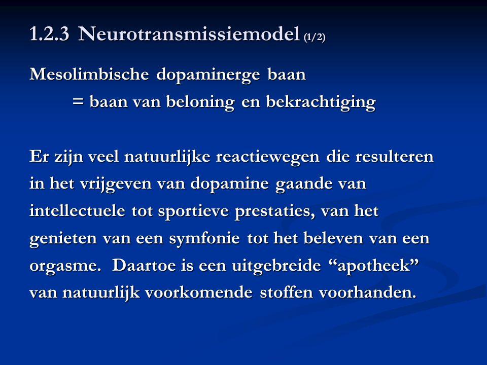 1.2.3 Neurotransmissiemodel (2/2) Zelfgeproduceerde morfine/heroïne = endorfinen Zelfgeproduceerde cannabis = anandamide Zelfgeproduceerde nicotine = acetylcholine Zelfgeproduceerde cocaïne/amfetamine = dopamine Middelenmisbruik zou afhangen van het aantal dopaminereceptoren dat een individu heeft: onderzoek m.b.t.