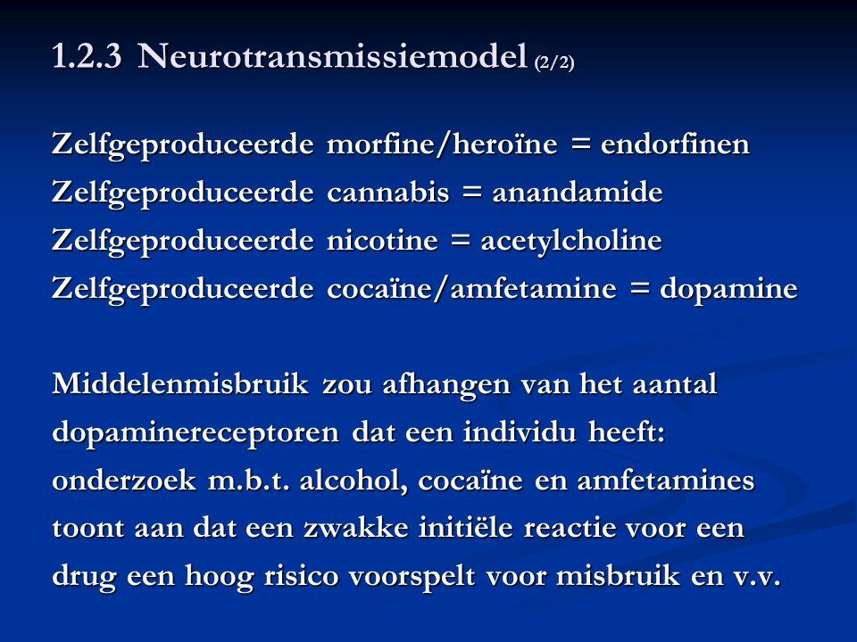 1.2.3 Neurotransmissiemodel (2/2) Zelfgeproduceerde morfine/heroïne = endorfinen Zelfgeproduceerde cannabis = anandamide Zelfgeproduceerde nicotine =