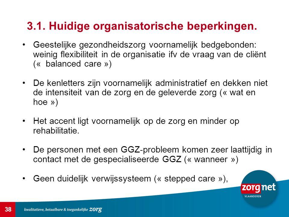 38 3.1.Huidige organisatorische beperkingen.