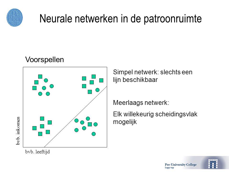 Neurale netwerken in de patroonruimte Voorspellen bvb. leeftijdbvb. inkomen Simpel netwerk: slechts een lijn beschikbaar Meerlaags netwerk: Elk willek