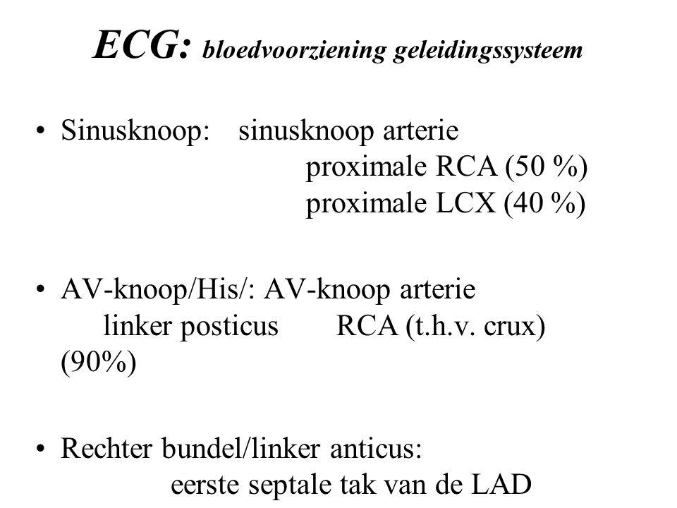 ECG: bloedvoorziening geleidingssysteem Sinusknoop:sinusknoop arterie proximale RCA (50 %) proximale LCX (40 %) AV-knoop/His/: AV-knoop arterie linker posticus RCA (t.h.v.