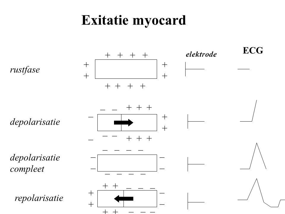 + + + + ++ rustfase _ _ __ _ + + + + depolarisatie elektrode ECG _ _ __ depolarisatie compleet + + _ _ _ _ repolarisatie Exitatie myocard