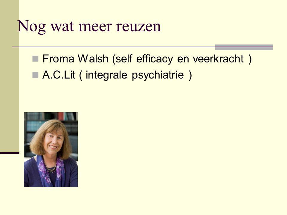 Nog wat meer reuzen Froma Walsh (self efficacy en veerkracht ) A.C.Lit ( integrale psychiatrie )