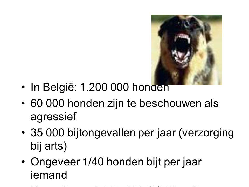 In België: 1.200 000 honden 60 000 honden zijn te beschouwen als agressief 35 000 bijtongevallen per jaar (verzorging bij arts) Ongeveer 1/40 honden bijt per jaar iemand Kostprijs: ± 18 750 000 € (750 miljoen BEF) ± 1000 gerechtelijke onderzoeken per jaar tegen hondeneigenaars t.g.v.