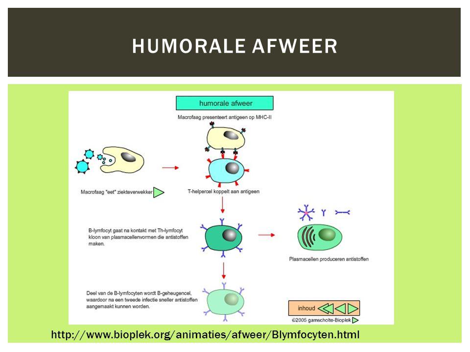  Precipitatie tests  Agglutinatie tests  Immunoassay - ELISA IMMUNOCHEMISCHE TECHNIEKEN