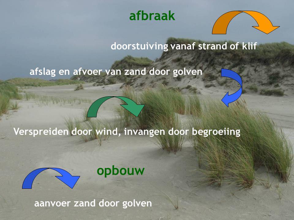 Dynamische klifkust opbouw afbraak aanvoer zand door golven doorstuiving vanaf strand of klif afslag en afvoer van zand door golven Verspreiden door wind, invangen door begroeiing