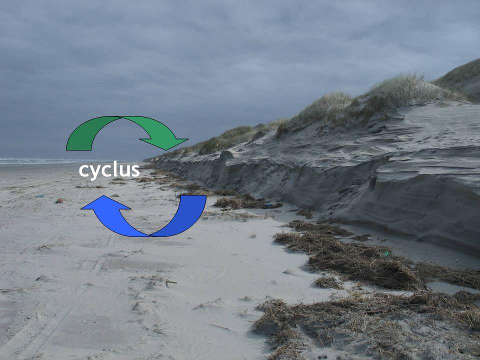 Kliffen cyclus