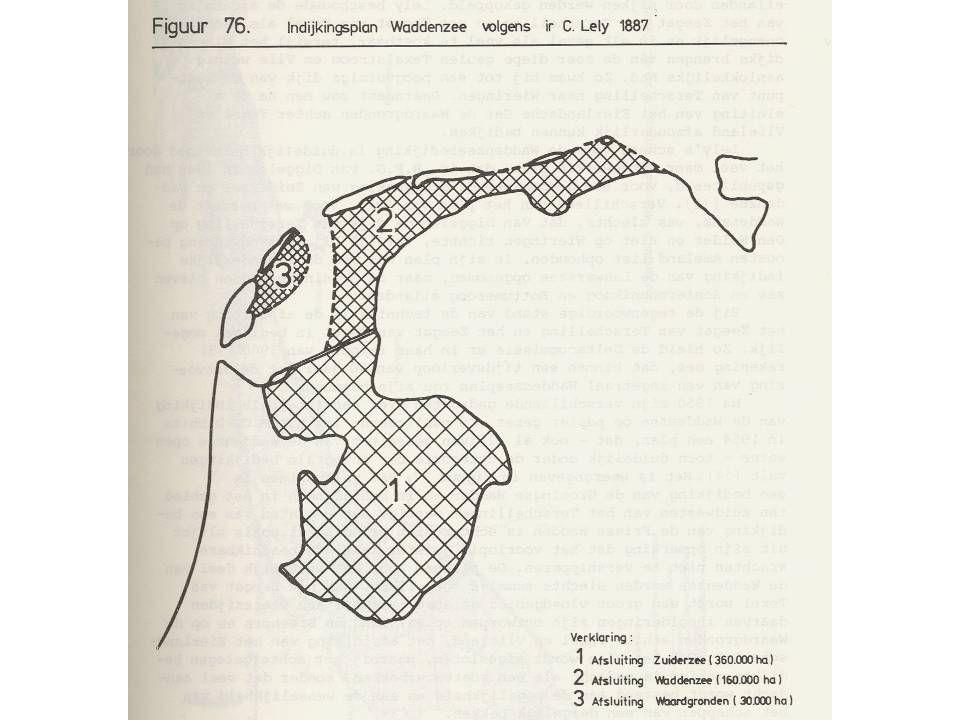 Groot zeegras: Grondstof voor dijken en matrassen Kraamkamer van zeekat en zeenaald Golfbreker en vastlegger van sediment Rond 1932 verdwenen uit de Waddenzee Herstel moeizaam