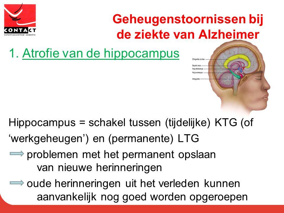 Geheugenstoornissen bij de ziekte van Alzheimer 1. Atrofie van de hippocampus Hippocampus = schakel tussen (tijdelijke) KTG (of 'werkgeheugen') en (pe