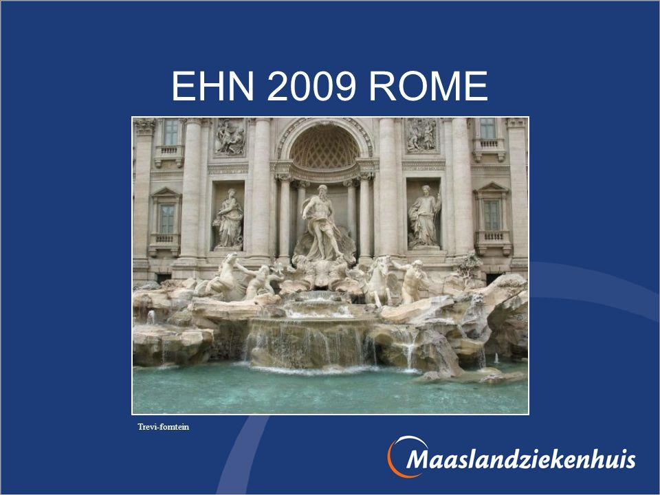 EHN 2009 ROME Trevi-fomtein