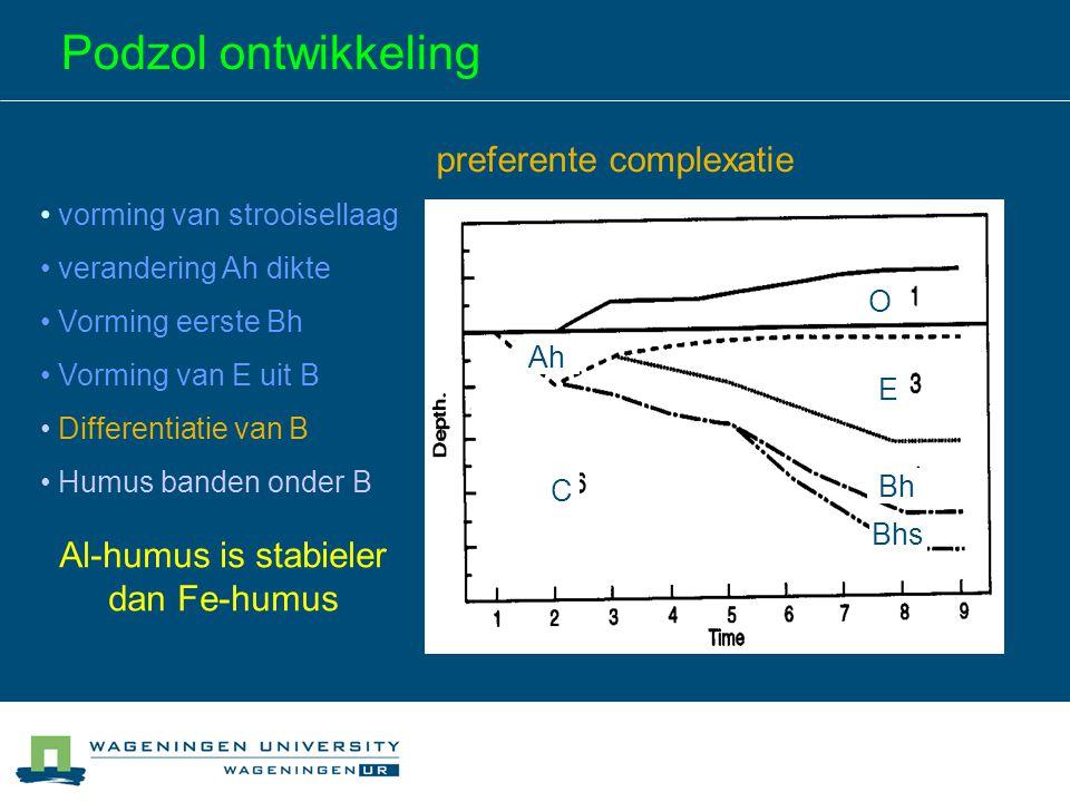 Podzol ontwikkeling vorming van strooisellaag verandering Ah dikte Vorming eerste Bh Vorming van E uit B Differentiatie van B Humus banden onder B O B