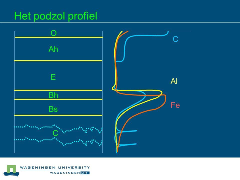 pH effect pH beïnvloedt oplossen in neerslaan dissociatie van OM (C/M + ratio's) hydroxylatie van metalen – Al(OH) 2+, Al(OH) + dus: verandering preferente complexatie met pH p Preferente complexatie: podzols in zand hebben Al maximum boven Fe maximum (pH daalt met de tijd)