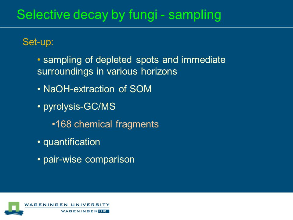 Selective decay by fungi - sampling Set-up: sampling of depleted spots and immediate surroundings in various horizons NaOH-extraction of SOM pyrolysis