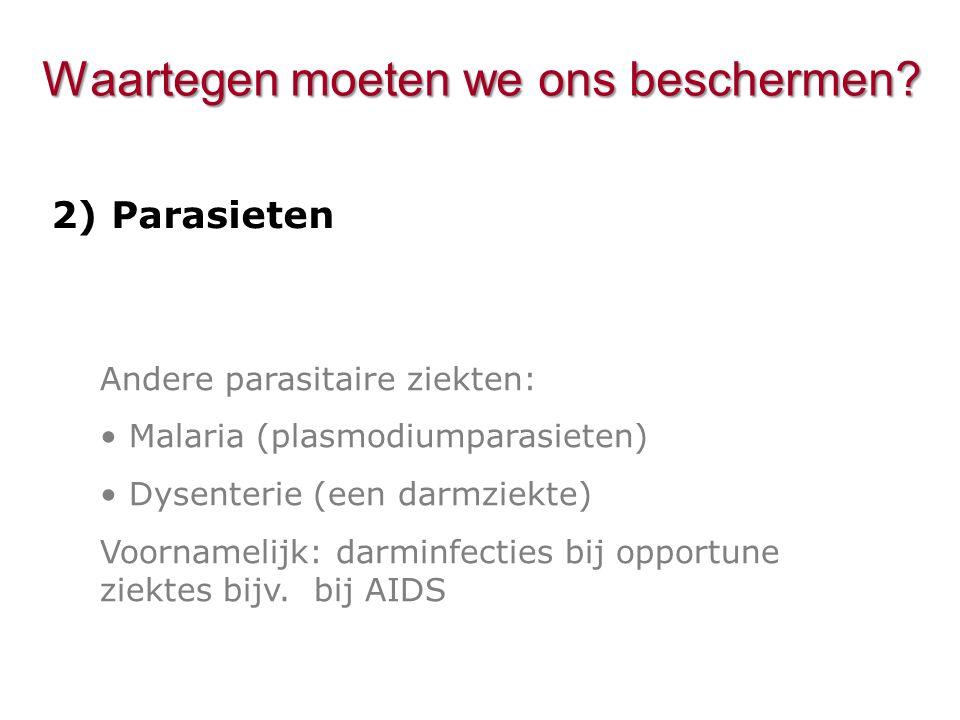 Andere parasitaire ziekten: Malaria (plasmodiumparasieten) Dysenterie (een darmziekte) Voornamelijk: darminfecties bij opportune ziektes bijv. bij AID