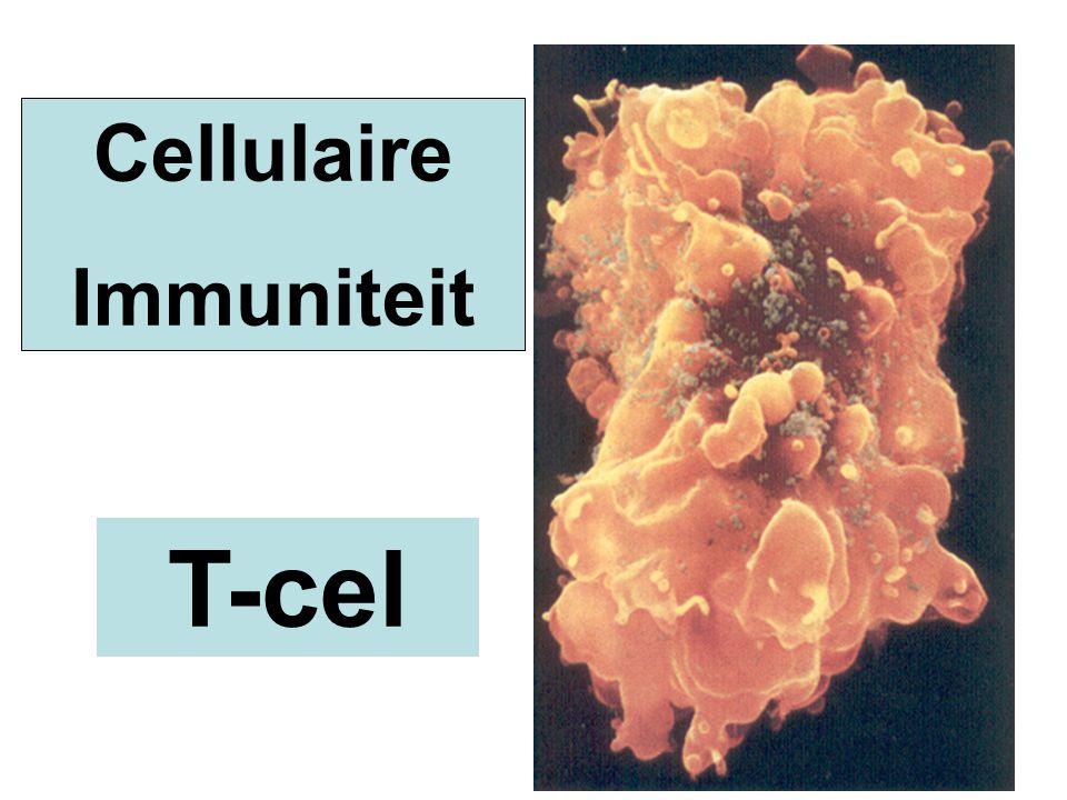 T-cel Cellulaire Immuniteit