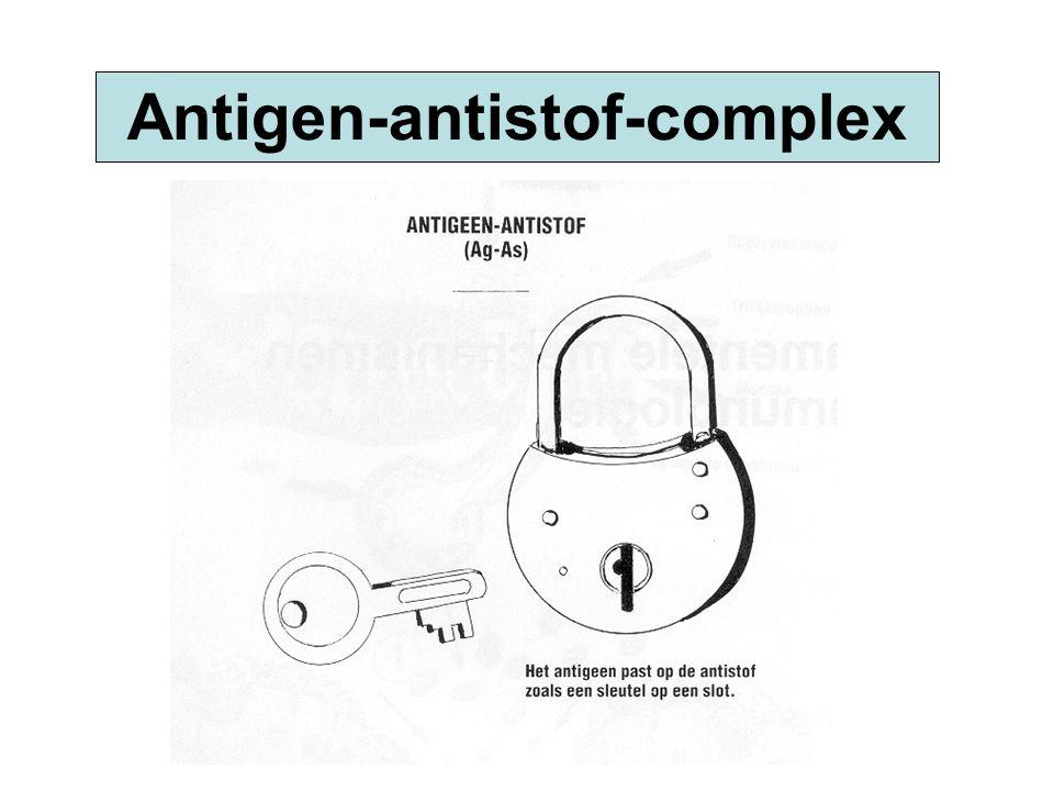 Antigen-antistof-complex