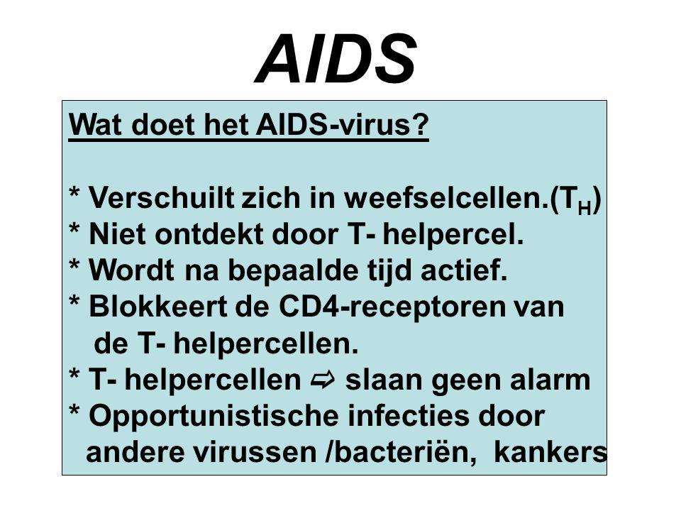 AIDS Wat doet het AIDS-virus? * Verschuilt zich in weefselcellen.(T H ) * Niet ontdekt door T- helpercel. * Wordt na bepaalde tijd actief. * Blokkeert