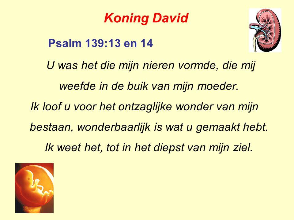 Rom 1:19,20 Want wat een mens over God kan weten is hun bekend omdat God het aan hen kenbaar heeft gemaakt.