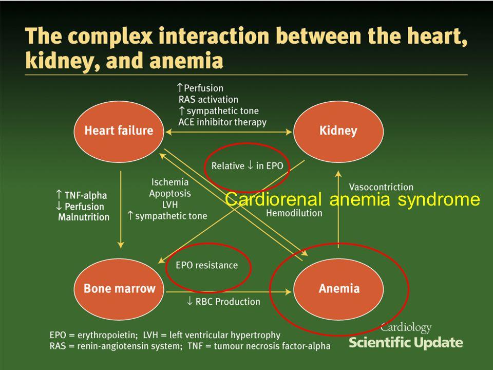 Cardiorenal anemia syndrome
