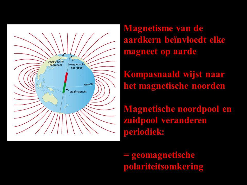 Magnetisme van de aardkern beïnvloedt elke magneet op aarde Kompasnaald wijst naar het magnetische noorden Magnetische noordpool en zuidpool veranderen periodiek: = geomagnetische polariteitsomkering XX