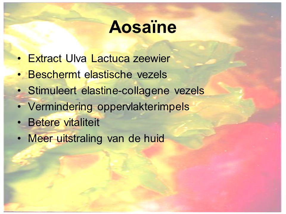 Aosaïne Extract Ulva Lactuca zeewier Beschermt elastische vezels Stimuleert elastine-collagene vezels Vermindering oppervlakterimpels Betere vitaliteit Meer uitstraling van de huid
