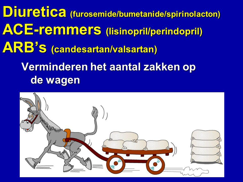 Diuretica (furosemide/bumetanide/spirinolacton) ACE-remmers (lisinopril/perindopril) ARB's (candesartan/valsartan) Verminderen het aantal zakken op de