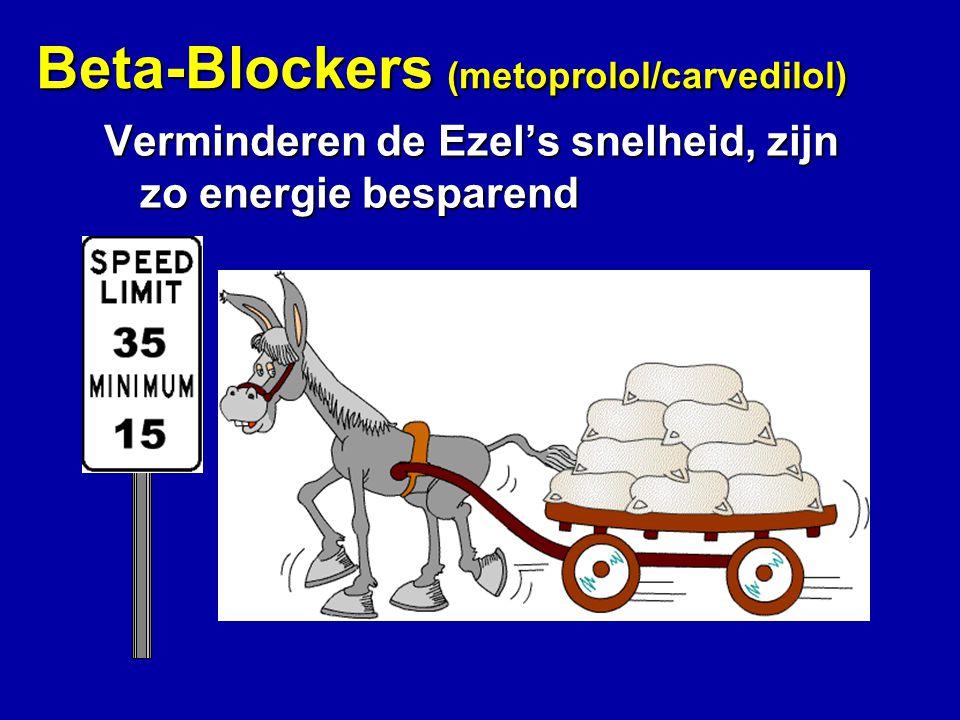 Beta-Blockers (metoprolol/carvedilol) Verminderen de Ezel's snelheid, zijn zo energie besparend