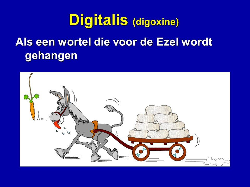 Digitalis (digoxine) Als een wortel die voor de Ezel wordt gehangen