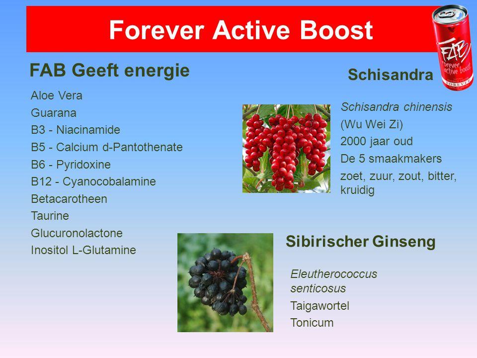 FAB Geeft energie Aloe Vera Guarana B3 - Niacinamide B5 - Calcium d-Pantothenate B6 - Pyridoxine B12 - Cyanocobalamine Betacarotheen Taurine Glucurono