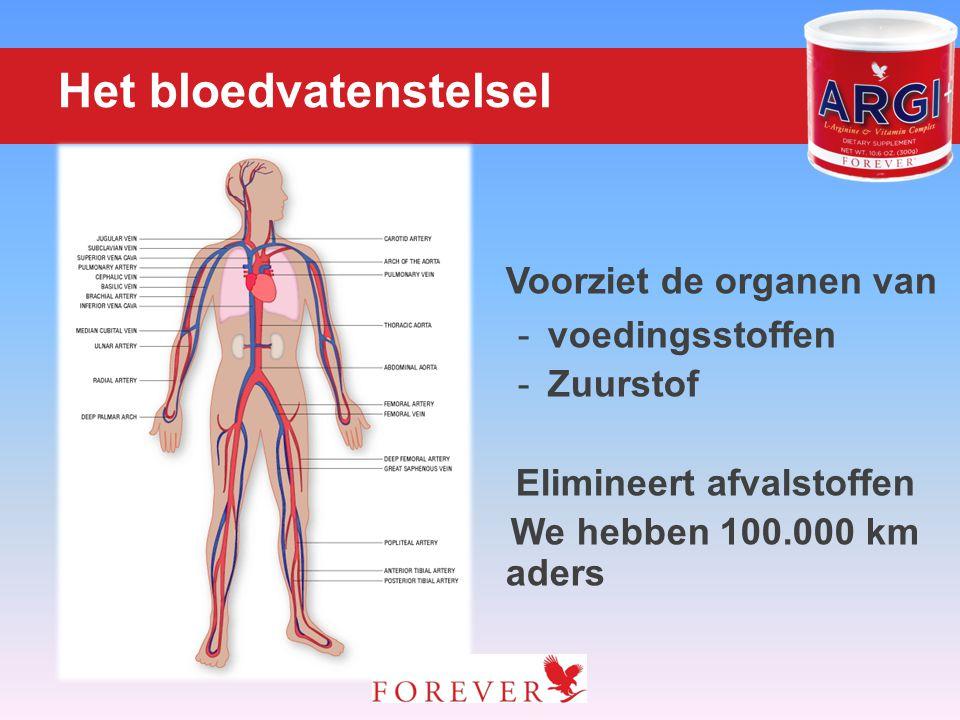 Het bloedvatenstelsel Voorziet de organen van -voedingsstoffen -Zuurstof Elimineert afvalstoffen We hebben 100.000 km aders
