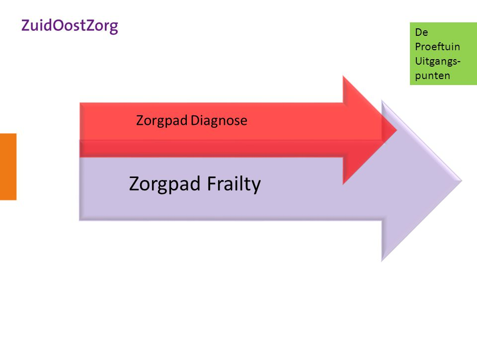 Zorgpad Frailty Zorgpad Diagnose De Proeftuin Uitgangs- punten
