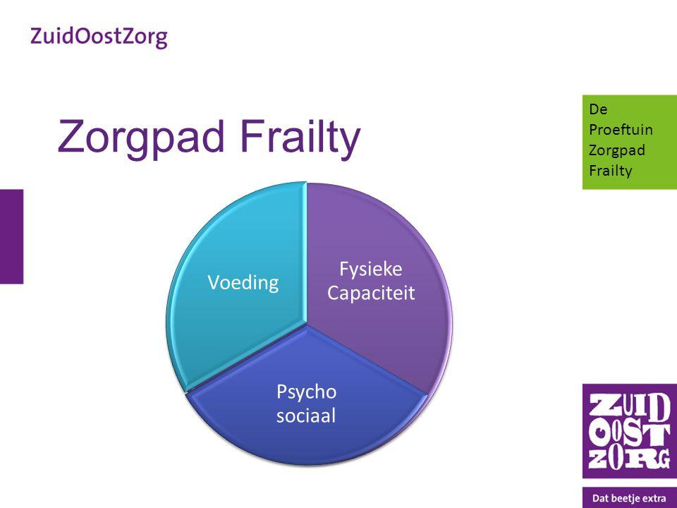 Zorgpad Frailty Fysieke Capaciteit Psycho sociaal Voeding De Proeftuin Zorgpad Frailty