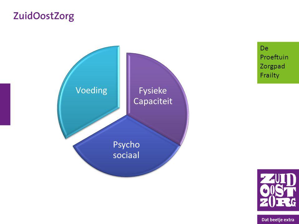 Fysieke Capaciteit Psycho sociaal Voeding De Proeftuin Zorgpad Frailty