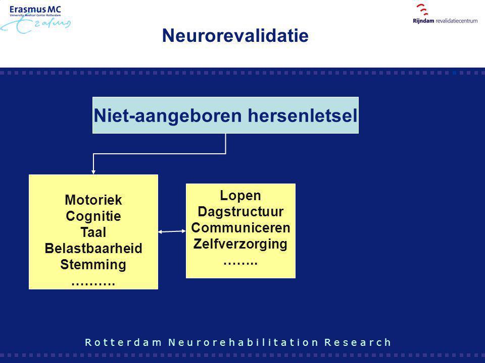 Motoriek Cognitie Taal Belastbaarheid Stemming ………. Niet-aangeboren hersenletsel Lopen Dagstructuur Communiceren Zelfverzorging …….. R o t t e r d a m